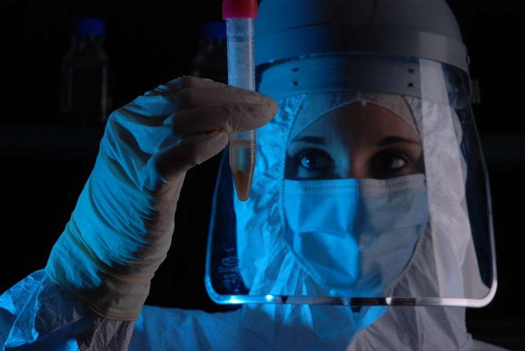 La découverte d'ADN exploitable dans d'anciens ossements de vaches trouvés en Iran est un fait inhabituel. De nombreuses précautions ont été prises pour éviter la moindre contamination. © Joachim Burger