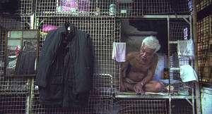 En Chine, des personnes âgées trouvent refuge dans des cages, à deux cents mètres d'un hôtel de luxe. (Photographie extraite du dossier de presse.) © Mars Distribution