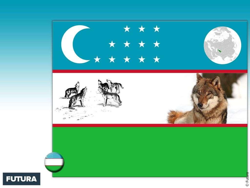 Drapeau : Ouzbékistan