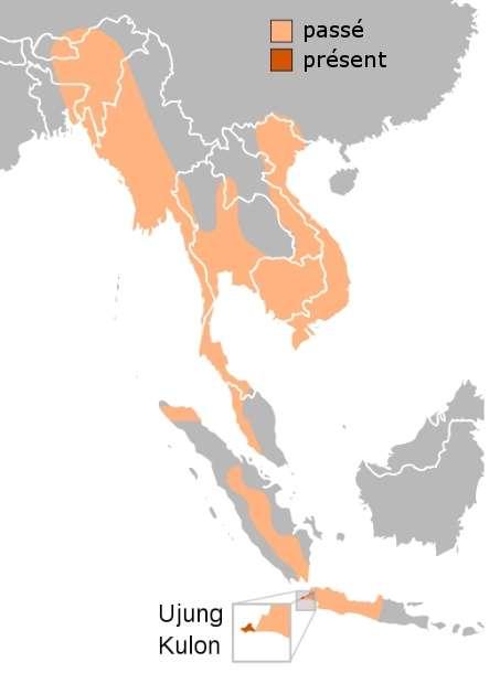 Répartition du rhinocéros de Java, après la mort du dernier spécimen vietnamien. © Jay Henry, Wikipédia, domaine public - adaptation Futura-Sciences