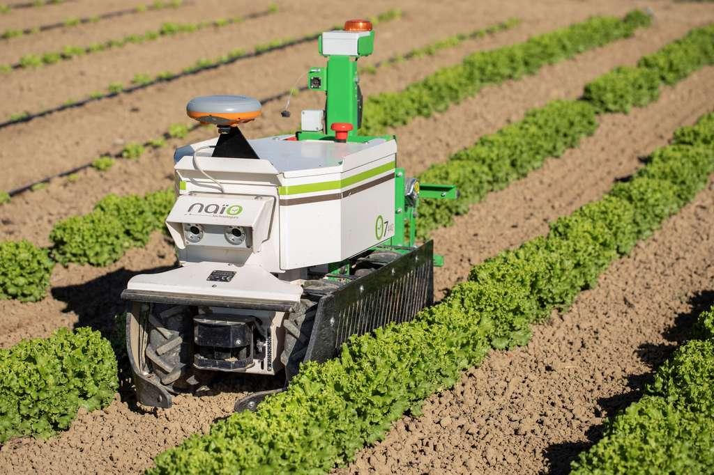 Une technologie robotisée au service de l'agriculture et des agriculteurs. © Naïo technologies