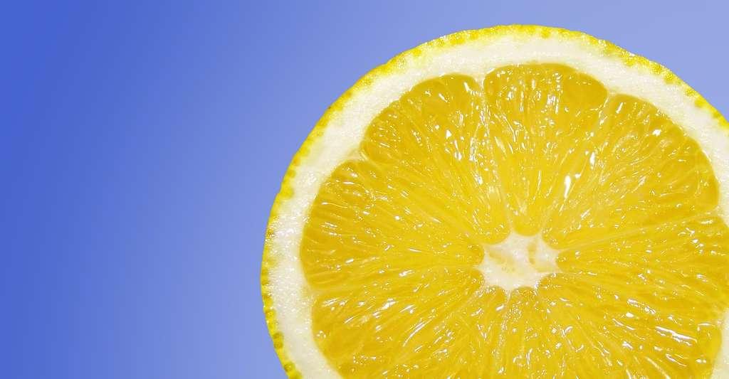 Pour éviter que les mauvaises odeurs n'apparaissent, vous pouvez placer un demi-citron sur votre évacuation. © Jaro_N, Pixabay, CC0 Creative Commons