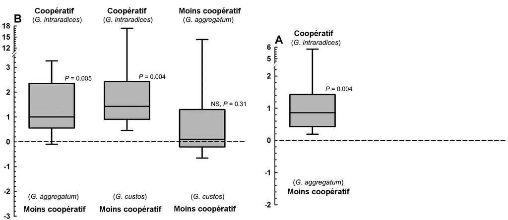 Attribution des ressources de carbone de la plante à ses différents symbiotes en fonction de leur niveau de coopération. Si la valeur indiquée par le trait dans le rectangle gris est au-dessus de zéro, cela signifie que davantage de carbone a été attribué à l'espèce du haut. Dans le graphe de gauche, les trois champignons sont en compétition, et la comparaison de l'attribution des ressources se fait deux à deux. À droite, deux champignons sont en compétition. On voit que quand elle a le choix, la plante attribue préférentiellement davantage de carbone aux espèces plus coopératives (les deux cas à gauche et celui de droite). © Kiers et al. 2011 - Science