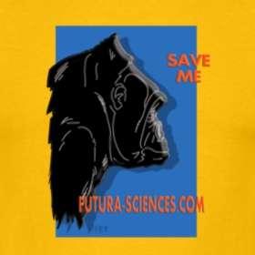 Découvrez nos T-shirts gorille.