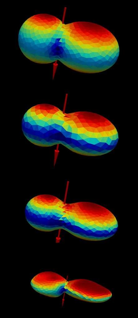 Instantanés de la simulation numérique de l'évolution de la forme de l'analogue d'Arrokoth en raison de la perte de masse provoquée par la sublimation. La forme la plus basse est un modèle numérique du terrain dérivé des observations de New Horizons. La couleur représente les températures moyennes sur une seule orbite. Le rouge correspond aux régions chaudes et le bleu aux régions plus froides. © PMO, MPS