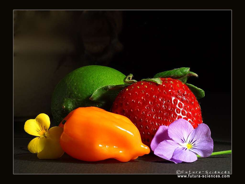 Fraise, citron vert, poivron jaune