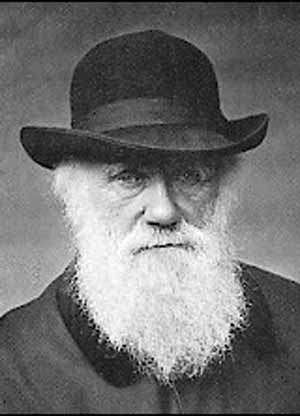 Charles Darwin en 1881. © Commons