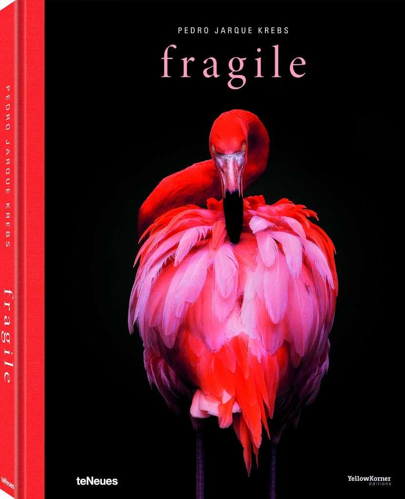 Fragiles, 50 euros sur Amazon