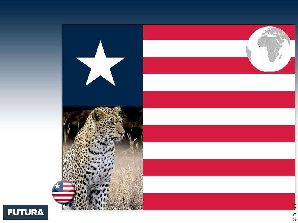 Drapeau : Liberia