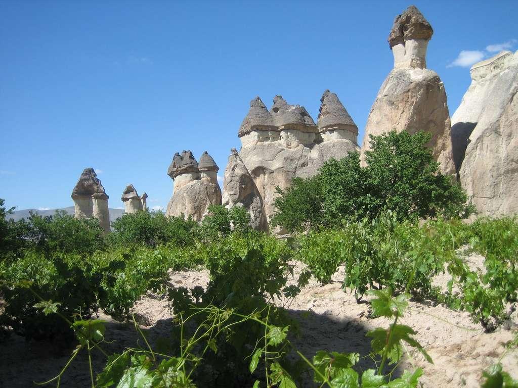 Les cheminées de fée en Cappadoce arborent une forme étonnante de champignon. © Sam Michel, Flickr