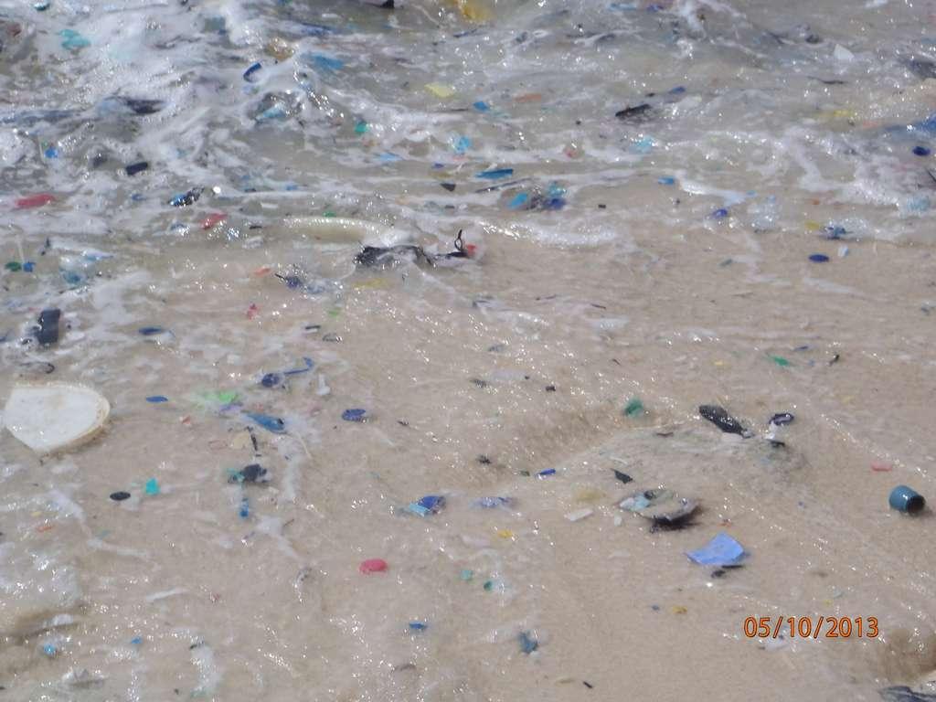 Des déchets de matière plastique de toutes tailles jonchent cette plage de l'île australienne Christmas, au sud de l'île de Java. Ces petits objets s'accumulent en de nombreux endroits de la planète et les oiseaux marins en sont victimes. © CSIRO, Britta Denise Hardesty