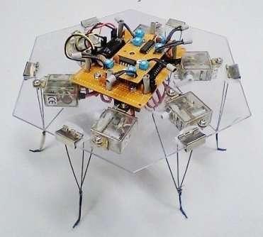 Ce joli robot à six pattes s'éloigne systématiquement de la lumière. Pourtant, aucun programme ni aucun humain ne lui commande de le faire.