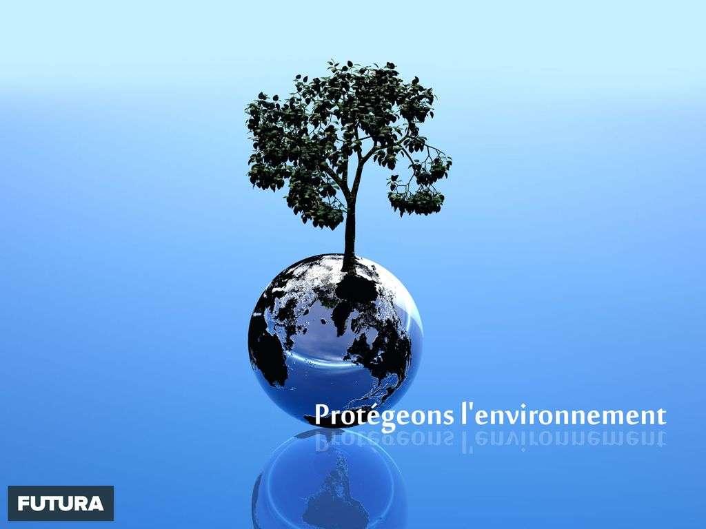 Notre environnement est précieux