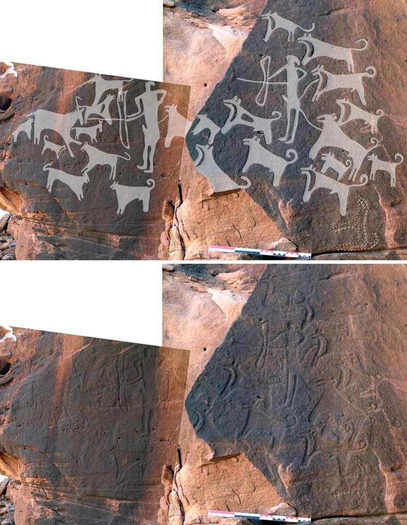 Image composite d'une scène de chasse gravée sur les parois du site de Shuwaymis. Un chasseur tient deux chiens en laisse par la taille. © Journal of Anthropological Archaeology, Maria Guagnin, Max Planck Institute for the Science of Human History