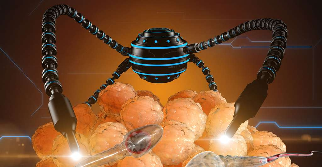 Le monde des nanotechnologies. © Pavel Chagochkin, Shutterstock
