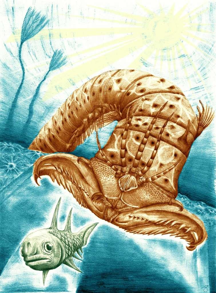 Reconstitution artistique de ce que pouvait être ce ver géant du Dévonien. Surgissant de son abri creusé dans le sable, il agrippait ses proies avec des mâchoires puissantes. © James Ormiston