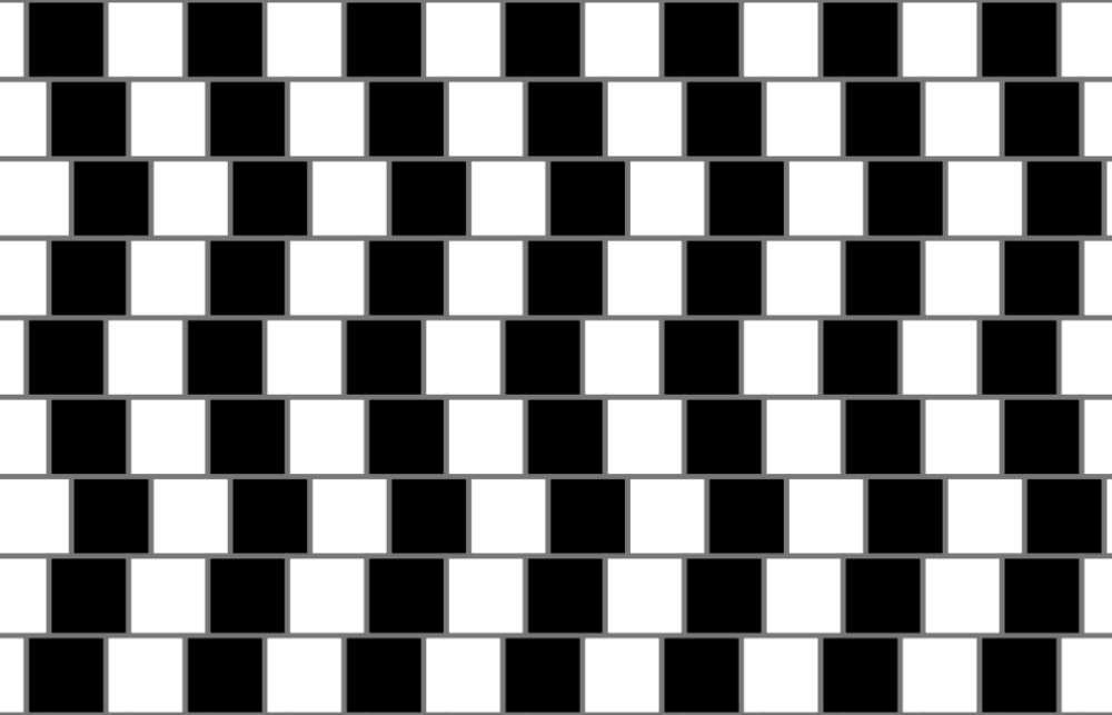 L'illusion du mur de café, décrite par Richard Gregory