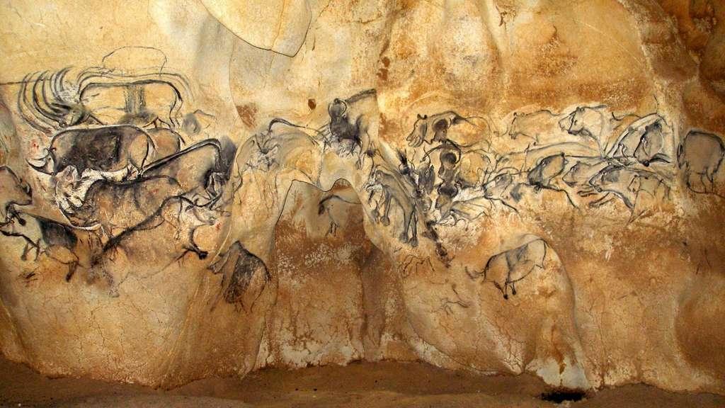 Depuis le 22 juin 2014, la caverne du pont d'Arc, en Ardèche, est classée au Patrimoine mondial de l'Unesco. On voit ici une grande fresque de la salle du fond. Une scène de chasse ? À droite, plusieurs représentations de lions avec différentes attitudes (aux aguets ?) apportent du dynamisme à la scène. Idem à gauche, où l'artiste semble vouloir animer les rhinocéros. © Jean Clottes, grotte Chauvet-Pont d'Arc