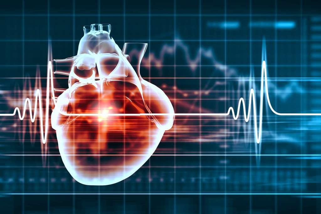 Le cœur artificiel Carmat a reçu un forfait d'innovation et vient d'obtenir la certification européenne. © Sergey Nivens, Shutterstock