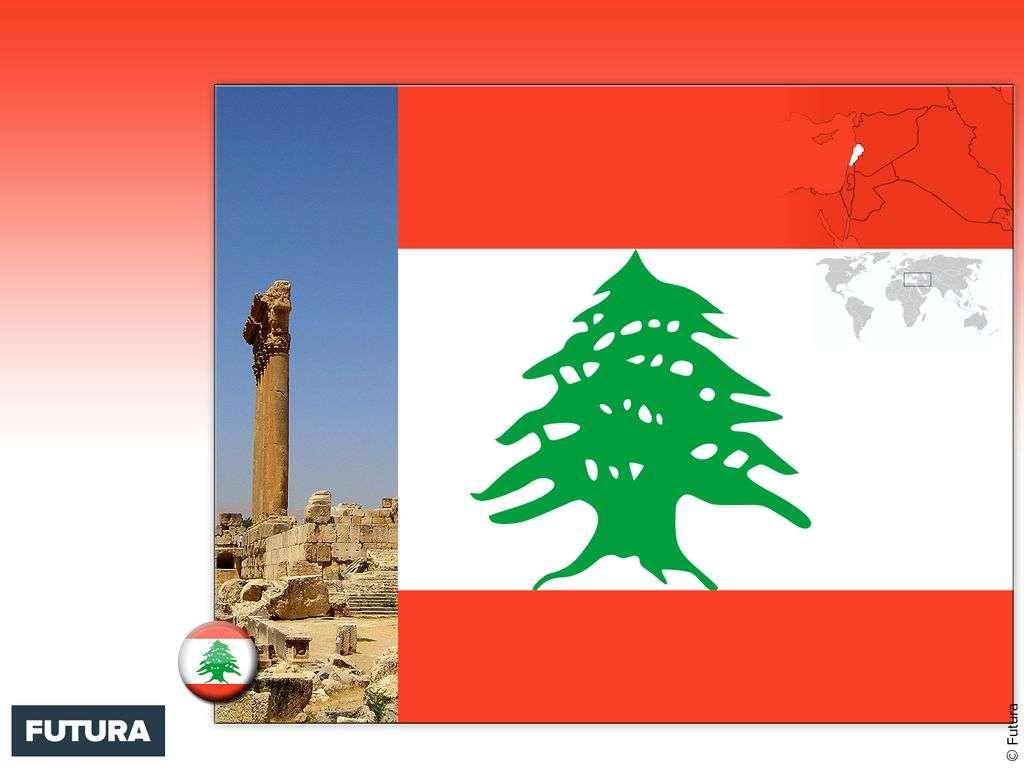 Drapeau : Liban