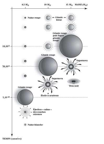 Description schématique de l'évolution d'étoiles de masses différentes. Attention à l'échelle du temps à gauche, qui indique les durées de vie dans une échelle non régulière. Les échelles de taille sont elles aussi schématiques. © Editions Le Pommier