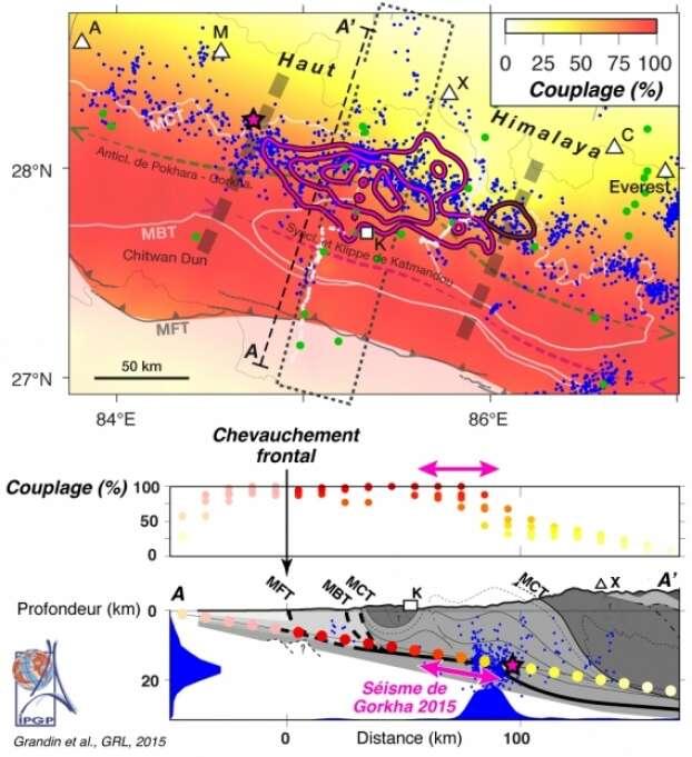 Le couplage intersismique représente la quantité de raccourcissement tectonique qui s'accumule chaque année. Une forte valeur (proche de 100 %, en rouge) indique que l'accumulation de contraintes s'opère à plein régime, tandis qu'une faible valeur (proche de 0 %, en jaune pâle) signifie que les plaques glissent l'une contre l'autre de façon quasi continue. Les points bleus représentent la microsismicité enregistrée régulièrement dans la zone. La bande de microsismicité semble prendre sa source au niveau de la transition entre la partie superficielle du plan de faille, bloquée, et la partie plus profonde, glissant de façon continue et asismique. Le séisme de 2015 semble s'être initié et propagé le long de cette zone de transition, sans toutefois avoir été capable de remonter jusqu'à la surface. Cette carte indique que les zones situées de part et d'autre du séisme de 2015 (à l'est et à l'ouest) accumulaient déjà des contraintes avant 2015. Ces parties ont été « chargées » par le séisme de 2015, sous l'effet d'un transfert de contraintes à distance. De même, la partie située au sud, jusqu'au MFT (en gris), est susceptible de rompre à l'avenir. © Grandin et al. GRL 2015