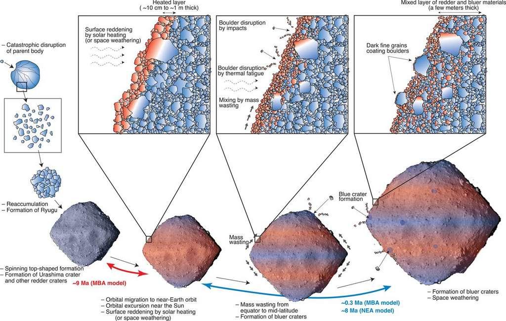 Illustration schématique de l'évolution de Ryugu telle que proposée par Tomokatsu Morota et ses collègues. Crédit : Morota et al. 2020.