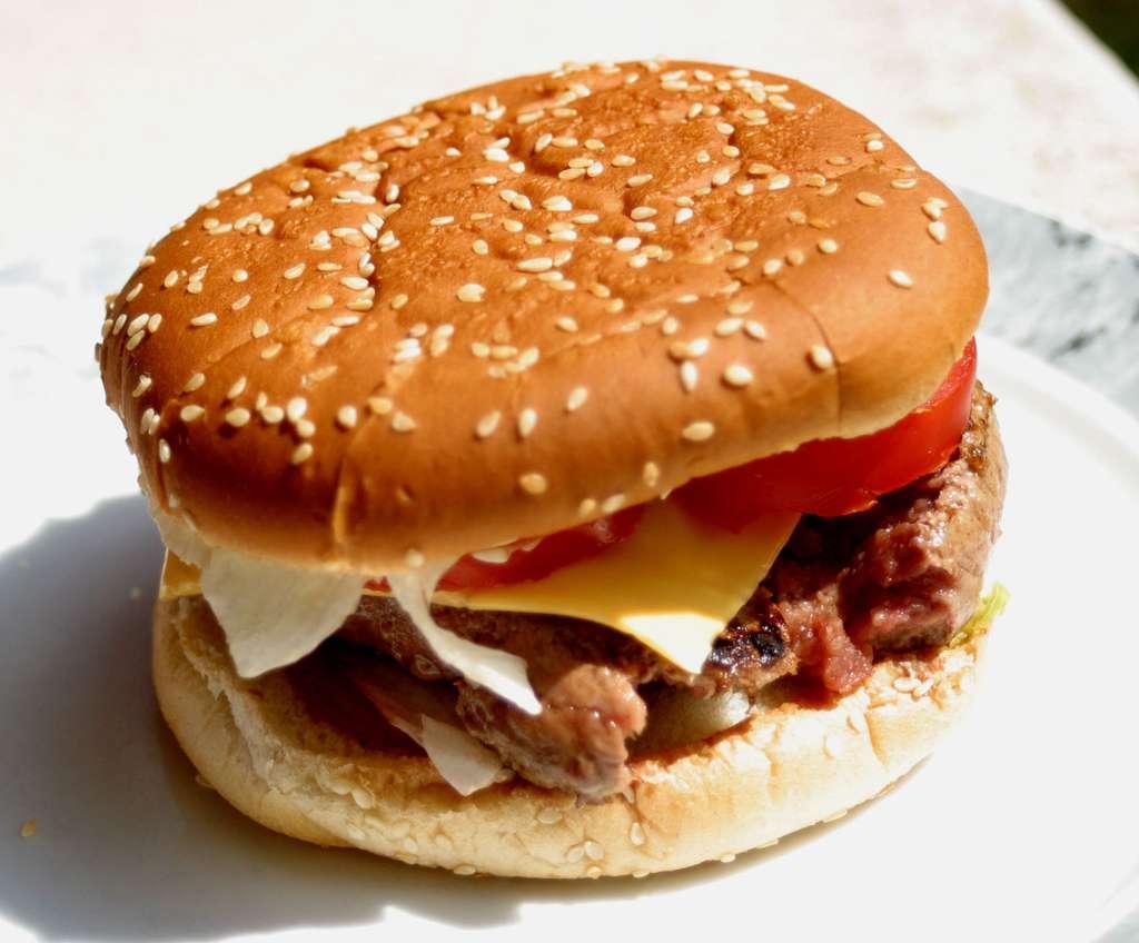 Pour des hamburgers du commerce distribués en nombre, le risque d'infection ne peut pas être négligé. La tranche de steak haché est alors moins épaisse et cuite à cœur. © Vincent Leclerc