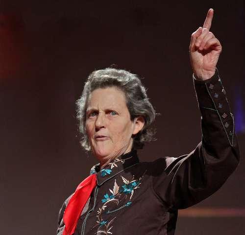 Temple Grandin a permis de mieux comprendre le monde dans lequel évolue l'autiste, en racontant sa vie dans différents ouvrages. © Steve Jurvetson, Flickr, CC by 2.0