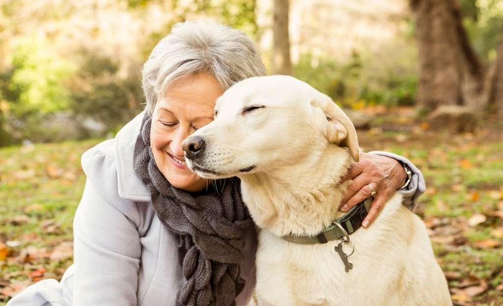 Partager sa vie avec un chien aide à réguler son anxiété. © WavebreakMediaMicro, Adobe Stock