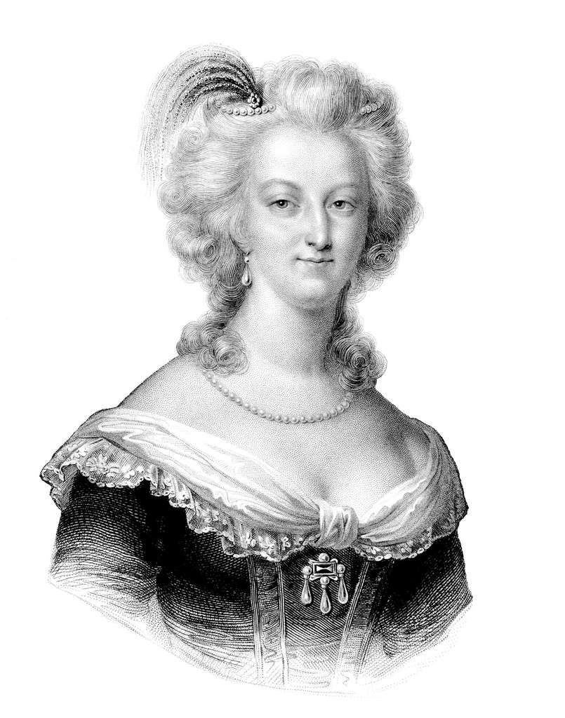 De suite rejetée par Versailles de par ses origines - Habsbourg, anciennement ennemis des Bourbon - Marie-Antoinette fut critiquée pour son physique mais admirée pour sa grâce et son intelligence. © Erica Guilane-Nachez, fotolia