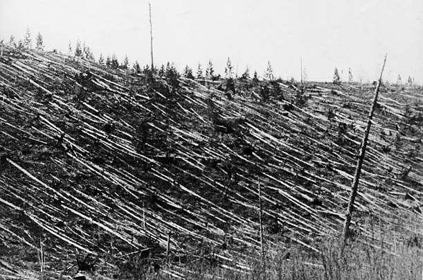 Le 30 juin 1908, la région de Tungunska en Russie fut dévastée par l'onde de choc d'une explosion survenue dans l'atmosphère. Était-ce une météorite ? Un débris de comète ? © DP
