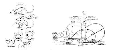 Le prototype du rat artificiel Psikharpax. © AnimatLab, DR