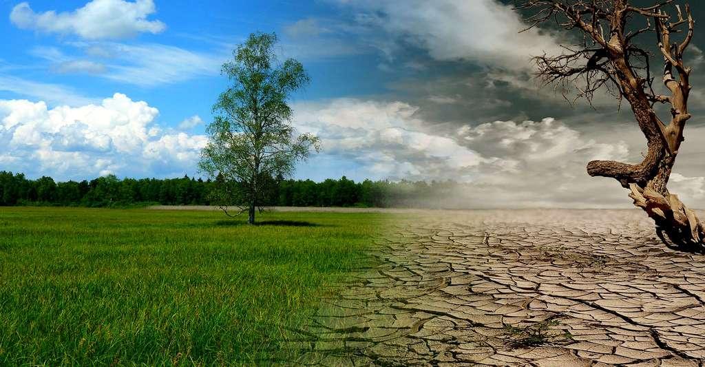 L'histoire du climat, depuis les premières archives jusqu'aux mesures d'aujourd'hui. © LoggaWiggler, Marion, DP