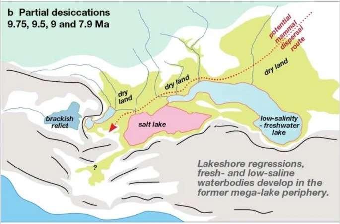 Le lac a subi quatre régressions majeures entre 9,75 et 7,9 millions d'années, favorisant la création de « corridors » pour la dispersion des animaux (en rouge). © Dan Valentin Palcu et al, Scientific Reports, 2021
