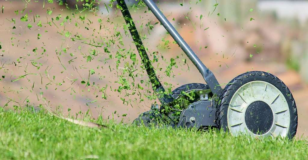 Quand faut-il tondre sa pelouse ? De quelle tondeuse à gazon avez-vous besoin ? ici, une tondeuse manuelle, idéale pour les petites surfaces. © Counselling, Pixabay, DP
