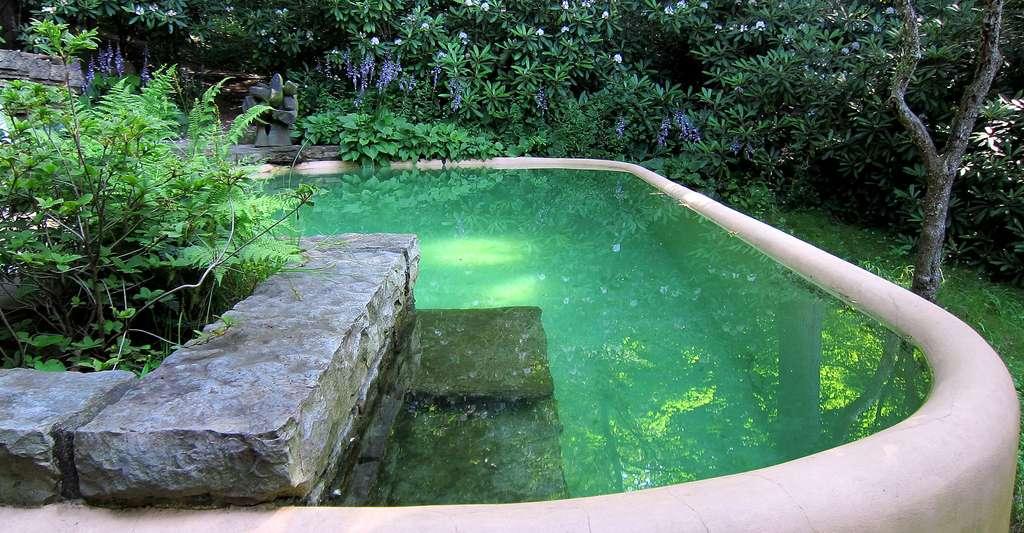 Comment l'eau est-elle filtrée dans les piscines écologiques ? © Wally Gobetz, CC BY-NC 2.0