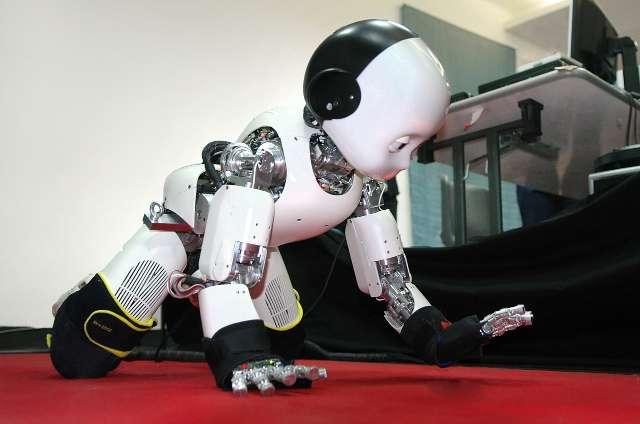 Le robot iCub. © Inria, DR