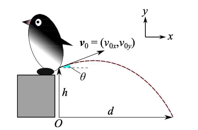 Modélisation de la trajectoire des excréments en fonction de l'angle de la vitesse initiale v et de la hauteur h. © Hiroyuki Tajima, Fumiya Fujisawa