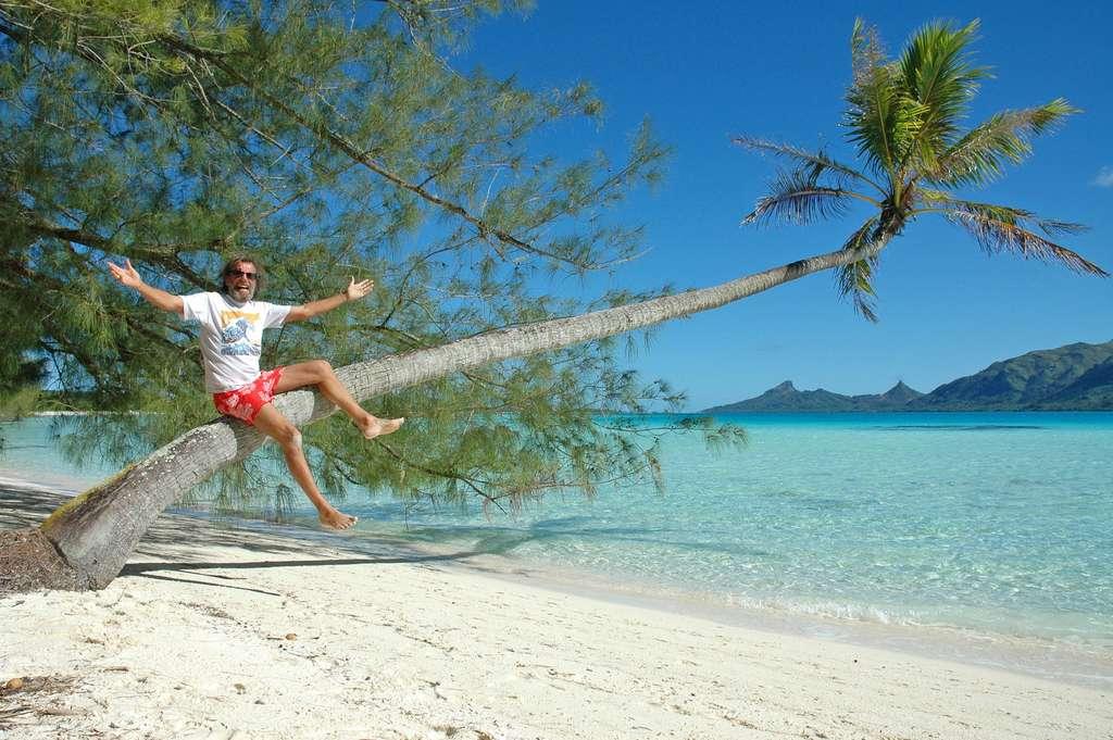 Un cocotier au bord du lagon de l'île de Raivavae