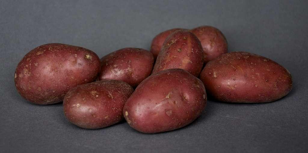 Pommes de terre roseval. © Susanne, CC by-nc 2.0