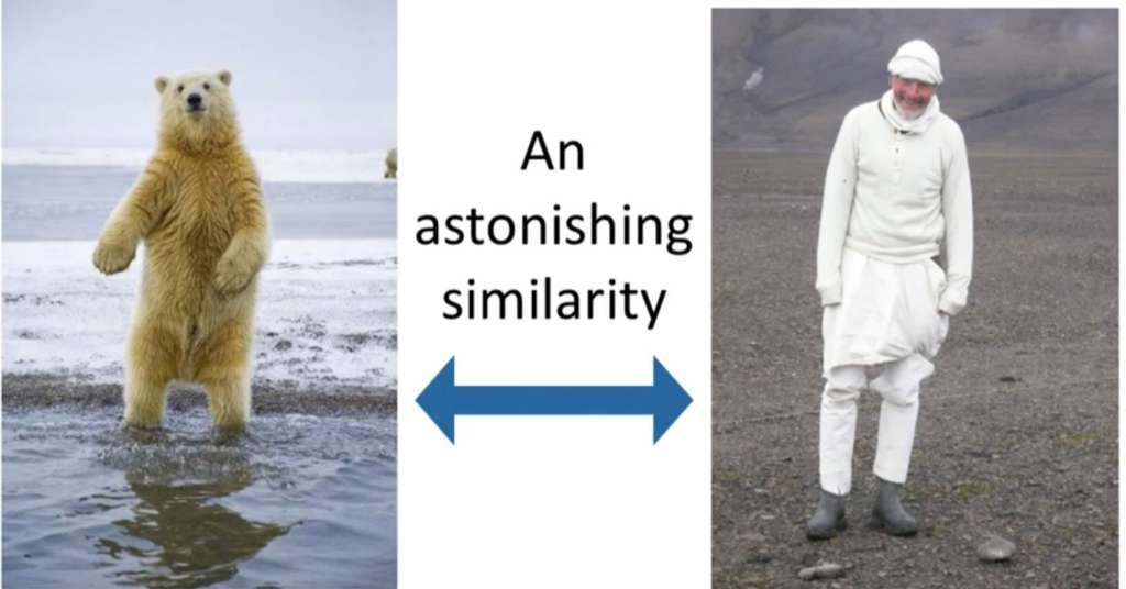 D'un côté, un chercheur déguisé et de l'autre, un ours polaire. Saurez-vous les reconnaître ? Pour un caribou, la réponse n'est pas si simple. © Improbable Research