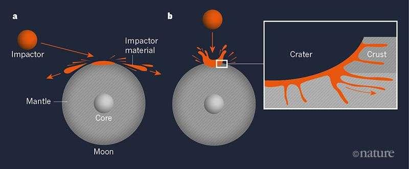 La capacité de la Lune à retenir les matériaux d'un impacteur dépend en partie de l'angle de l'impact par rapport à sa surface. De ce fait, et grâce aux simulations des chercheurs, on sait que les impacts à angle élevé (impacts directs) entraînent la rétention d'une fraction importante du matériau de l'élément de frappe. Après l'impact (encadré), un cratère et le matériau de l'impacteur peuvent s'incorporer à la fois dans la croûte lunaire et dans son manteau. © Nature
