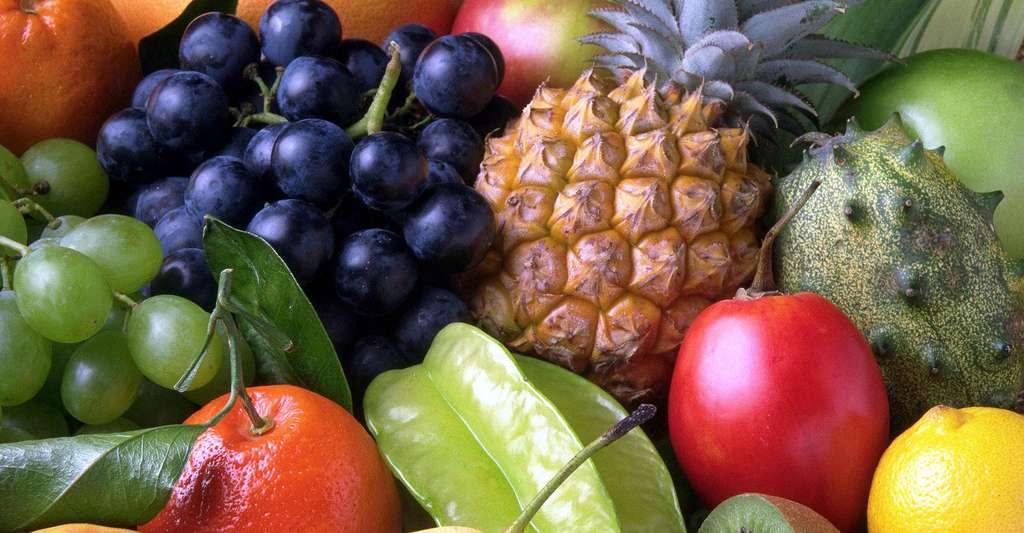 La diététique ancestrale recommande les fruits et légumes. © Romanov, DP