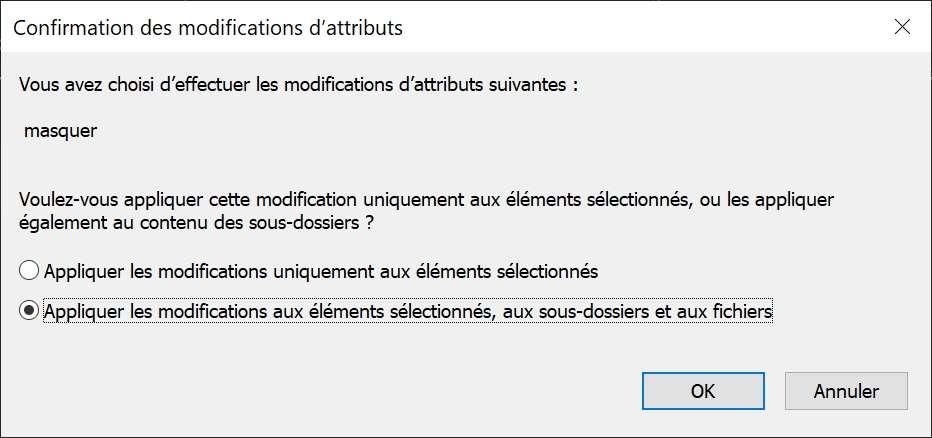 Fenêtre de choix des attributs pour les éléments contenus dans un dossier. © Microsoft