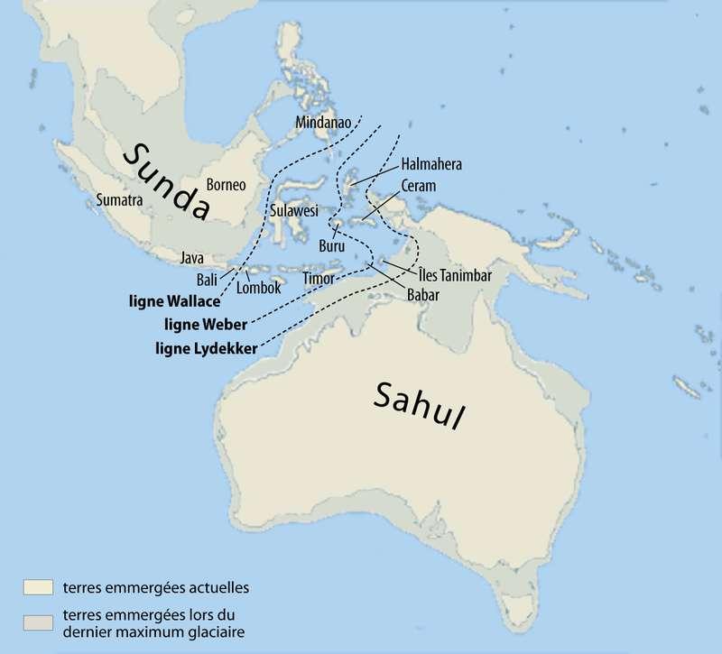 Comme le montre cette carte, Sahul est une plateforme continentale comprenant une partie aujourd'hui immergée, entre la Nouvelle-Guinée et l'Australie. © Maximilian Dörrbecker (Chumwa), Wikimedia Commons, cc by sa 2.5
