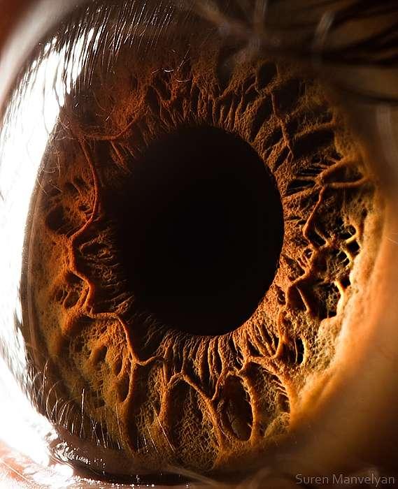 L'œil volcanique de l'Homme