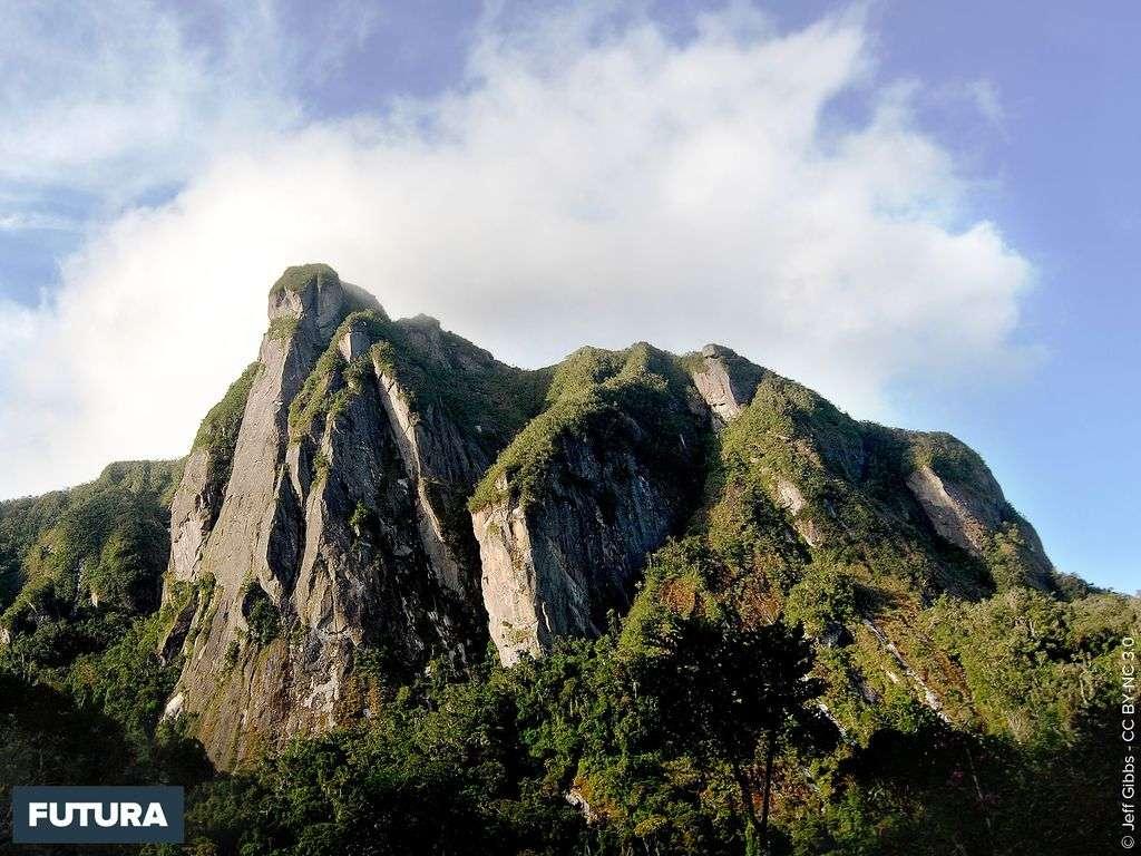 Ambatotsondrona - Le rocher penché - Madagascar