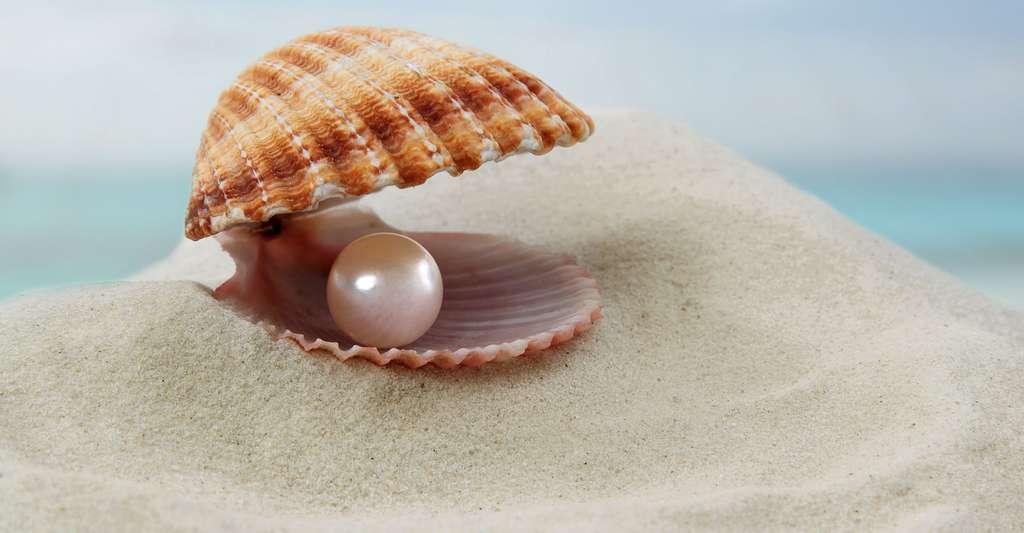 Une perle parfaite blanche, sans défaut. © Nyvlt-art, Shutterstock