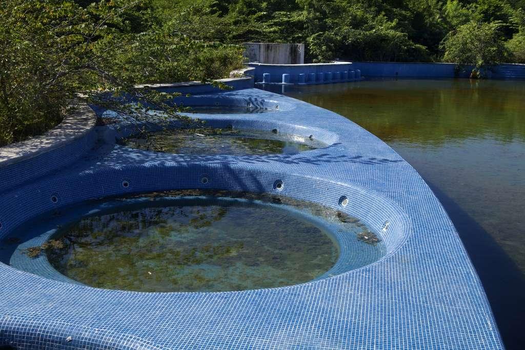 Les piscines abandonnées, les flaques d'eau stagnantes, sont de possibles gîtes larvaires. © Aneese, Fotolia